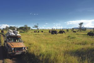 Safari goers watching elephants on the Serengeti Plain in Tanzania